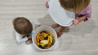 Photo of Ce facem cu deșeurile alimentare? Le transformăm în hrană pentru pământ. Familia mea a început compostarea și ne place!