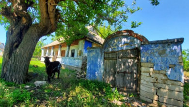 Photo of Donează pentru Muzeul Țăranului din Molovata Nouă și primește cadou un sejur la pensiunea rustică
