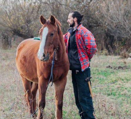 Photo of Valeriu Istrati a salvat de la moarte 4 cai și i-a adoptat. Ajută-l să-i crească!