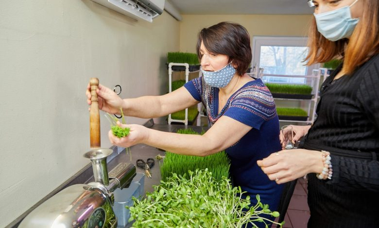 """Photo of Lucia Gavriliță a găsit elixirul tinereții fără bătrânețe și licoarea împotriva cancerului. Crește mica minune în laboratorul """"Verde viu"""""""